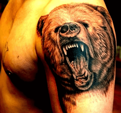 Braunbär auf dem Arm