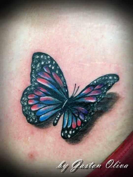 Bunter Schmetterlin mit Schatten