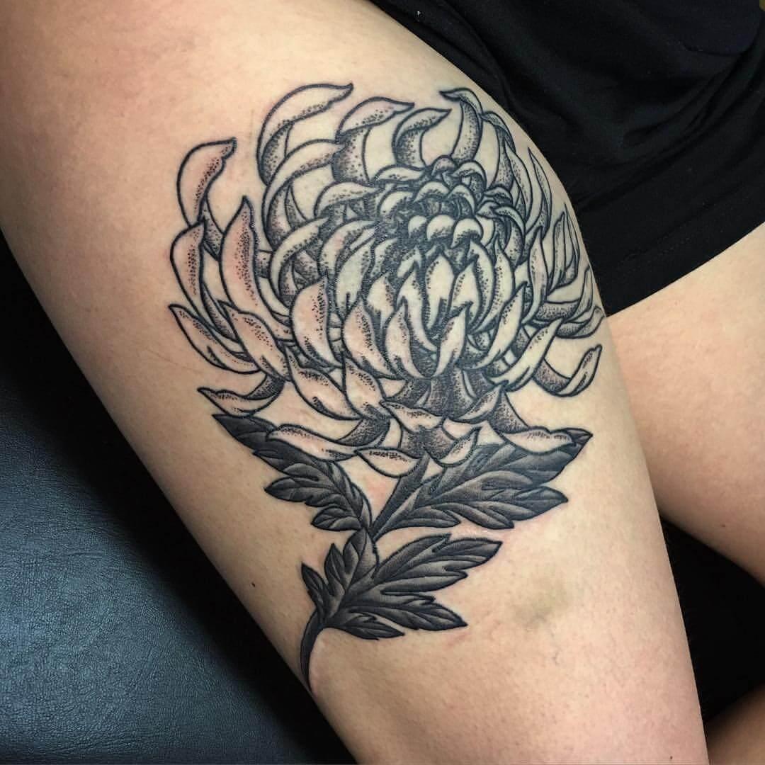 Chrysanthemen Blume