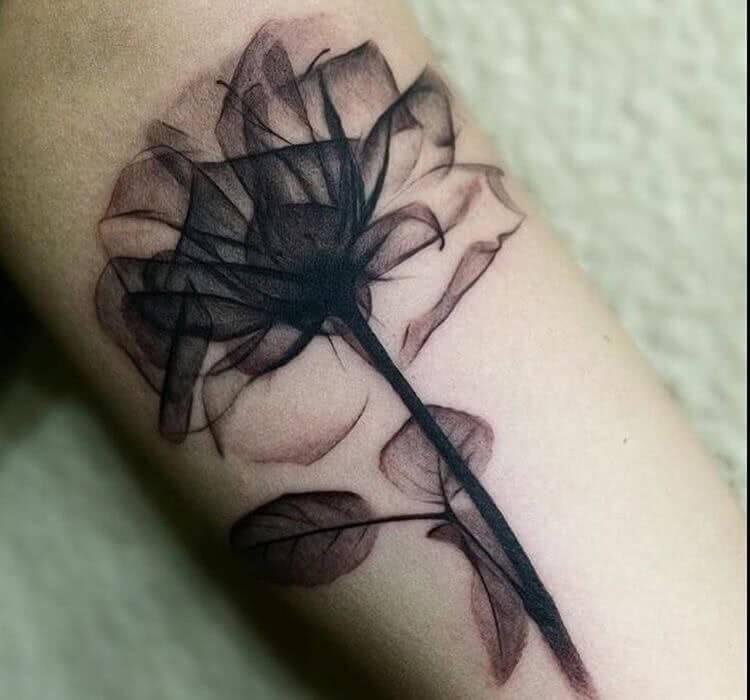 Halbdurchsitige Blume