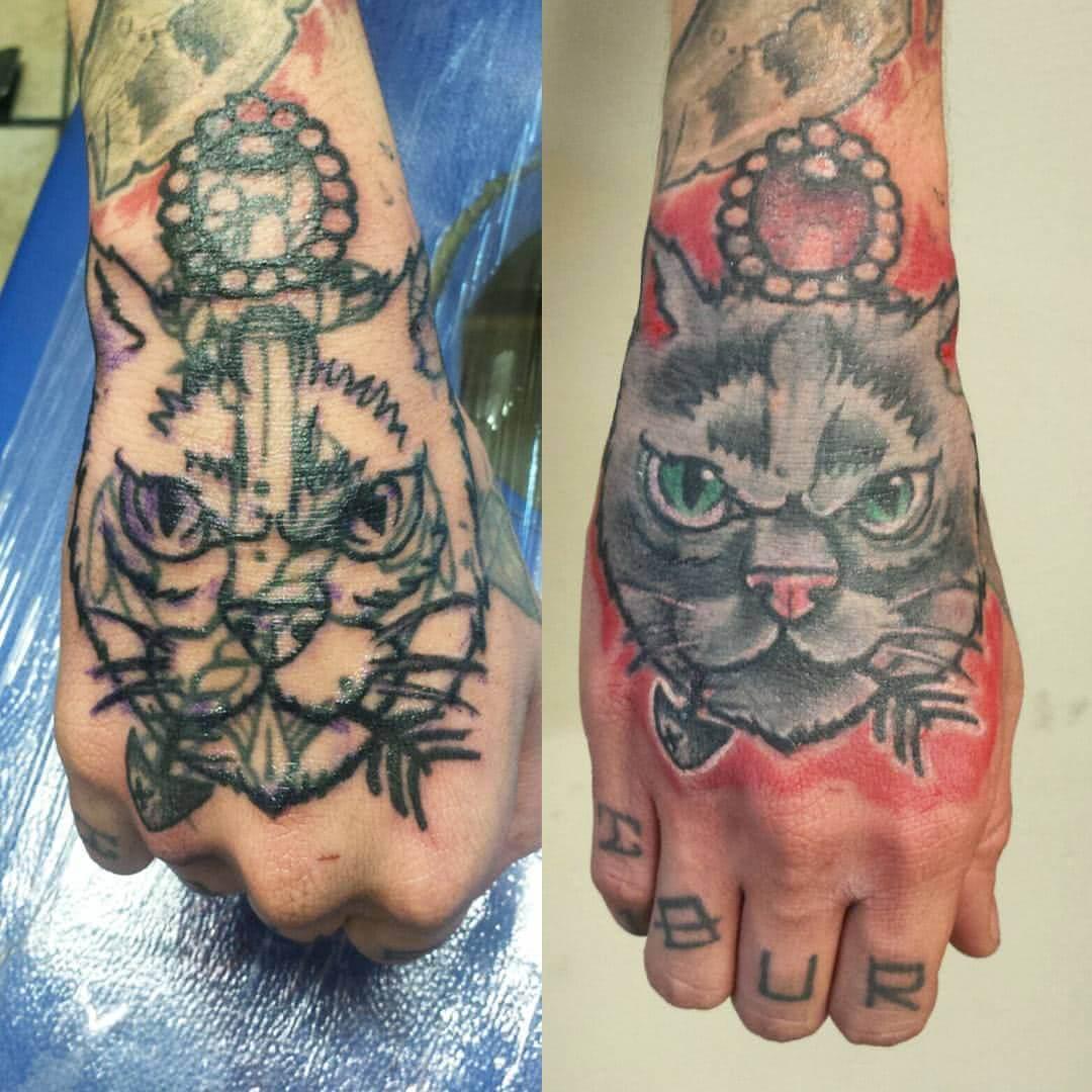 Katzen Cover Up
