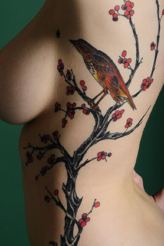 Vogel auf Ästen