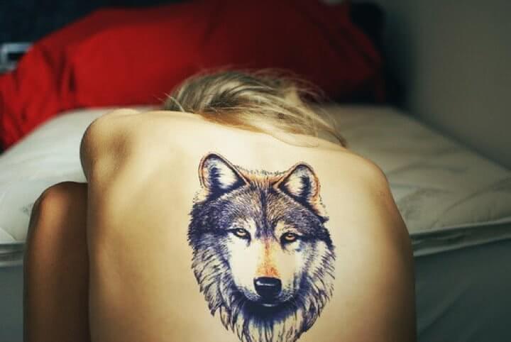 Wolf kopf Rücken